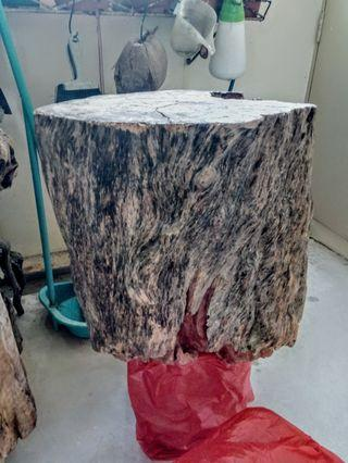 Natural Tree Trunk