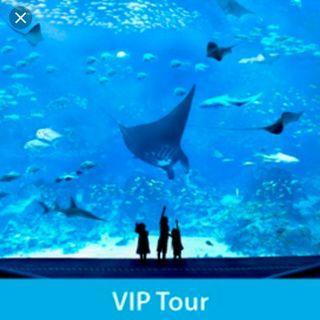 🚚 Sea aquarium tickets