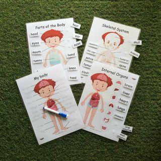 ALL ABOUT OUR BODY learning resources