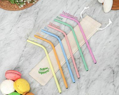 BENT STAINLESS STRAW (PASTEL)