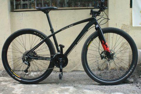 Cole Brontes XC 29er Alivio set-up MTB Mountain bike