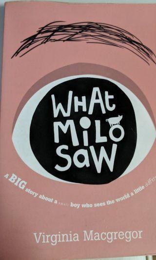 🚚 What Milo Saw
