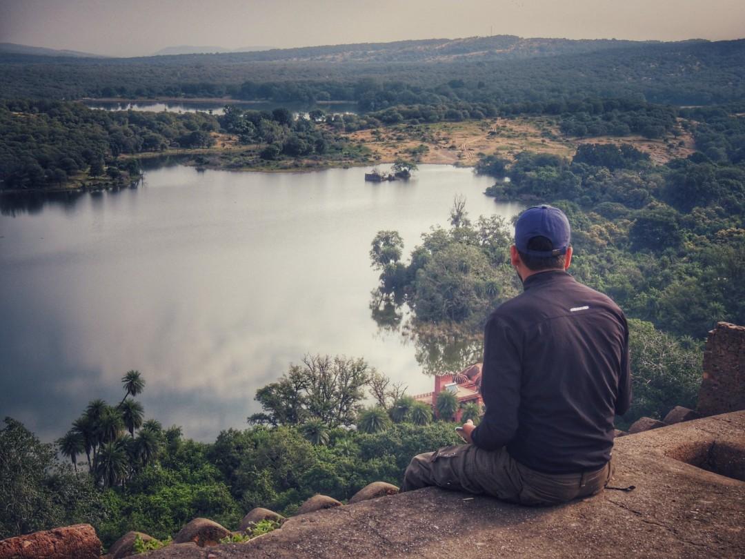 🐈 🐅WILD🏕 ESCAPE🐅🐈 (Ranthambore Tiger🐈 Reserve) –(4D/3N Tour) Incredible India