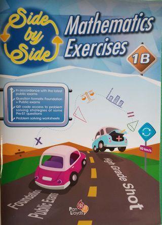 Mathematics Exercise P1B