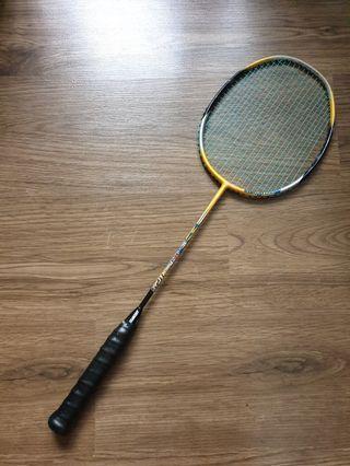 Arrowpoint Badminton Racket