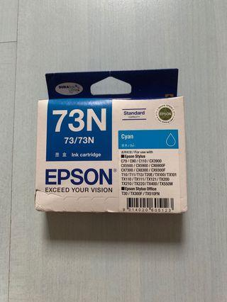 Epson Ink Cartridge 73n