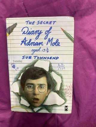 🚚 Story Book- The secret diary of adrian mole aged 13 3/4