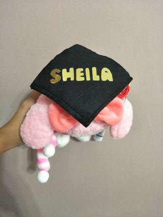 Customise graduation bear with names