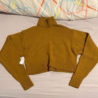 NWT WILFRED HEINEN CROP TURTLENECK