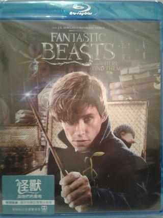 Blu-ray 怪獸與牠們的產地 Fantastic Beasts and Where to Find Them