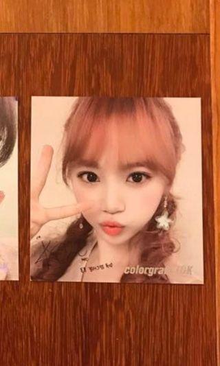 WTB izone chaewon cologram photo