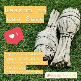 Sage Leaves$12 per pack
