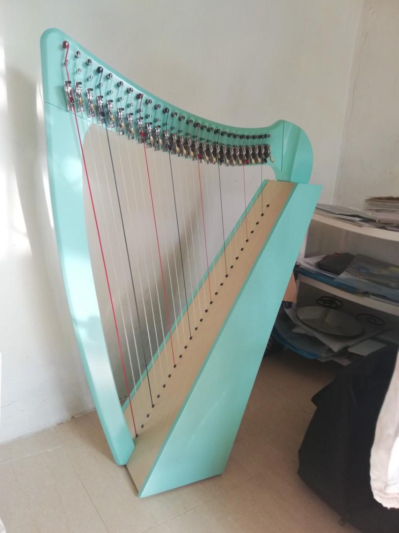 暑期豎琴課 harp lesson