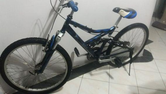 POLYGON RETRO 24 IN. BICYCLE