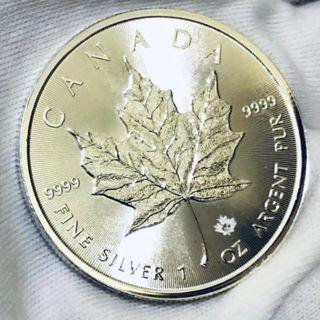2016 Silver 1 oz coin-Canadian Maple Leaf