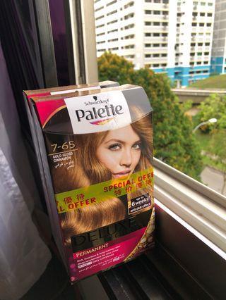 🚚 Palette Gold gloss cinnamon Hair Dye