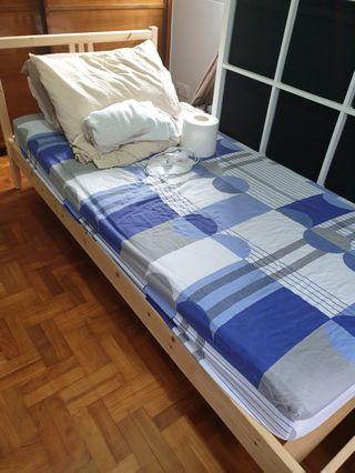 🚚 Wood bed frame, Seahorse mattress, bedding and lamp