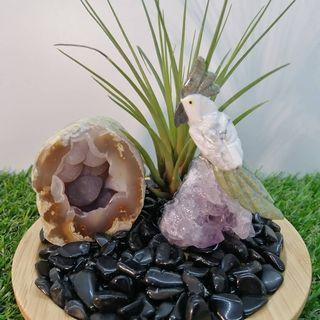 Father's Day Present - Crystal +Agate +Airplant