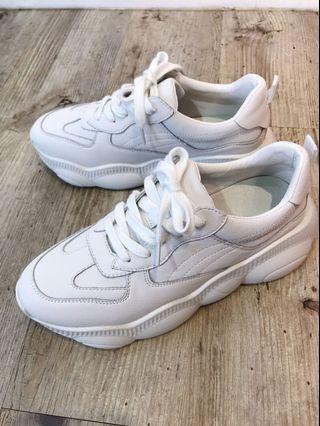 韓國🇰🇷帶回老爹鞋
