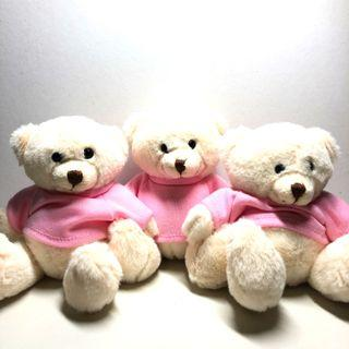 [BN] Small White Bear with Pink Shirt