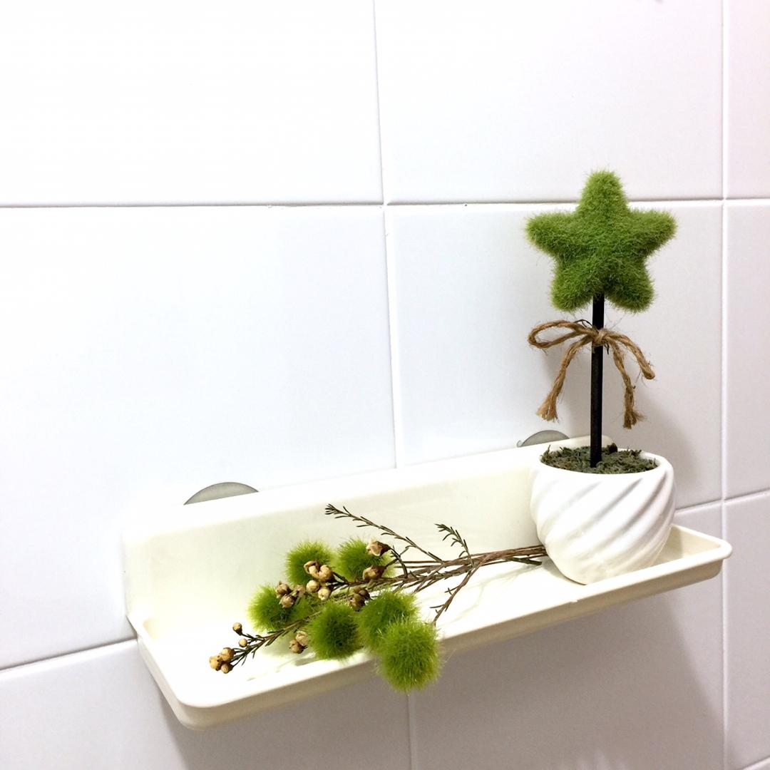 Simple reusable / removable shelf