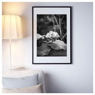 """Open Edition Print of """"Lotus"""" with Frame (61 x 91 cm)"""