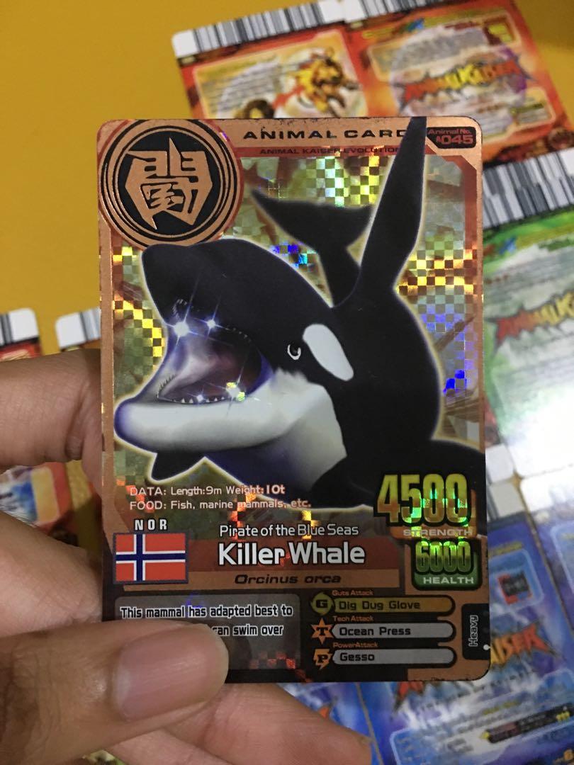 16 Animal Kaiser card