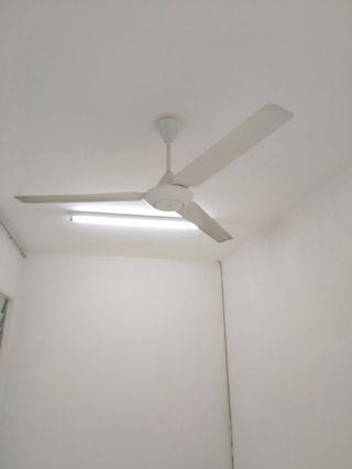 Wiring & plumber service