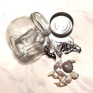 🚚 Terrarium Glass container with seashells