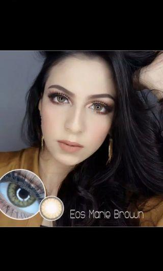 EOS MARIE Softlens (GRAY & BROWN)