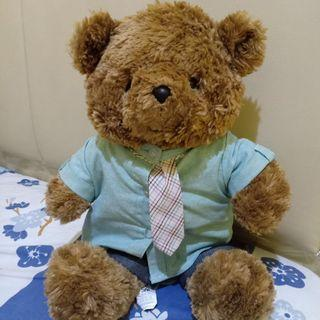 Teddy bear brown