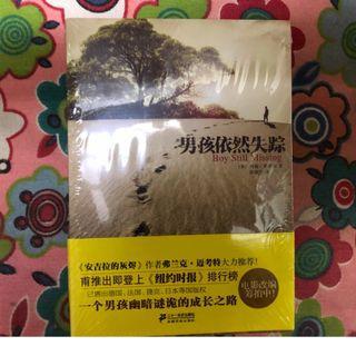 Chinese Book: 男孩依然失踪