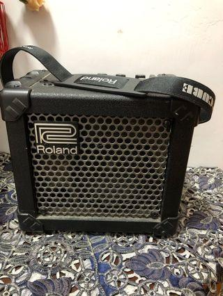 Roland Guitar amplifier 結他擴音器