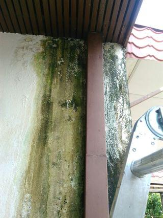 Mohd Zikry tukang paip dan renovation area bandar Kinrara : 0172883209