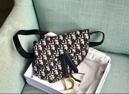 Dior Seller bag pouch 22 cm.