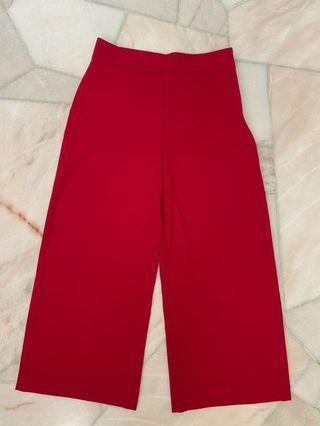 Zara Fuchsia pants