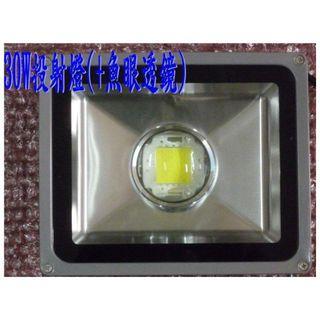 【ARS生活館】30W+魚眼透鏡(不炫光) LED 投射燈 3000流明 晶芯:CREE