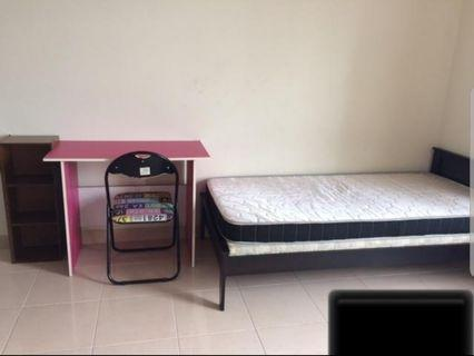 Rooms Available in Prima U1