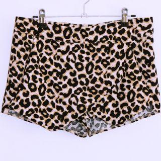 Leopard Print Shorts - Size 10