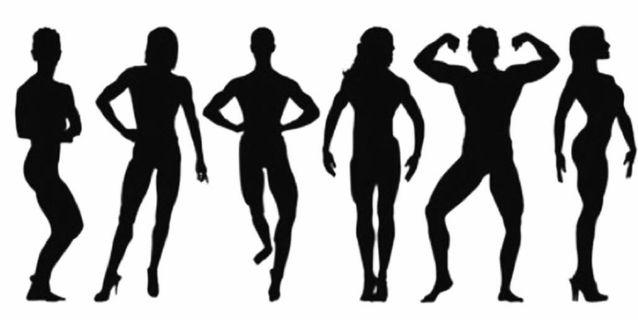女健身教練/伸展教練(AASFP)