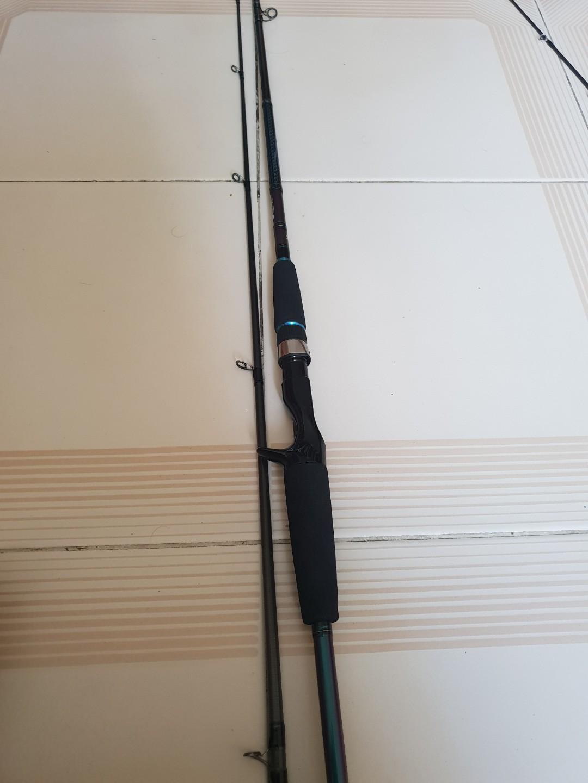 Daiwa harrier BC rod and Viper Perseus Coastal Game BC rod