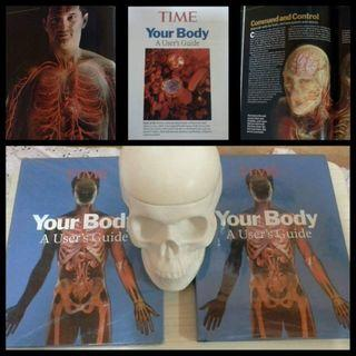 Your Body A users Guide