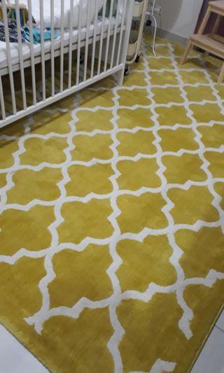 Large Modern Carpet Rug