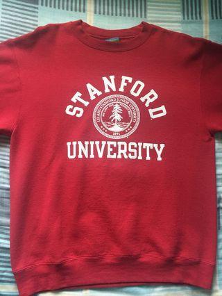 Champion Stanford Sweatshirt
