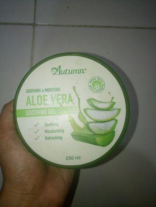 Aloe vera Autumn