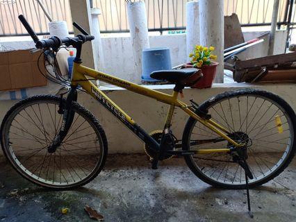 Wimcycle Kuning