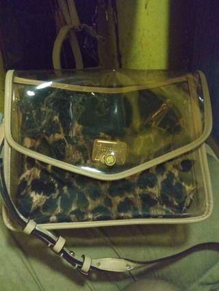 Victoria Secret transparent bag