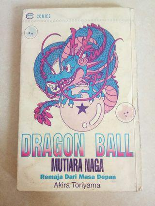 Mutiara Naga Dragon Ball 28