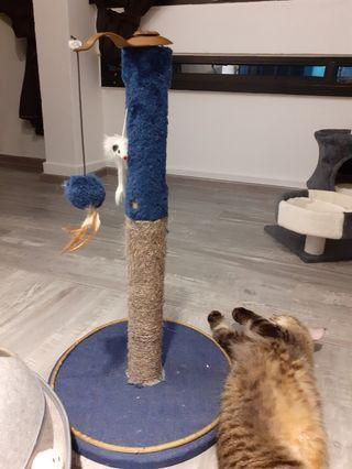 Cat Scratching Pole