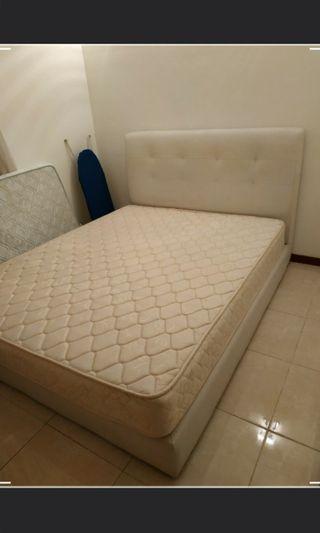 Queen Size Bed + Bedframe (Urgent)